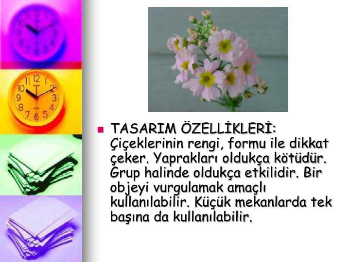 TASARIM ZELLKLER: ieklerinin rengi, formu ile dikkat eker. Yapraklar olduka ktdr. Grup halinde olduka etkilidir. Bir objeyi vurgulamak amal kullanlabilir. Kk mekanlarda tek bana da kullanlabilir.