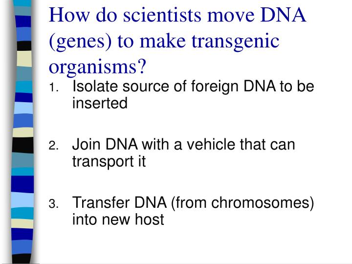 How do scientists move DNA (genes) to make transgenic organisms?