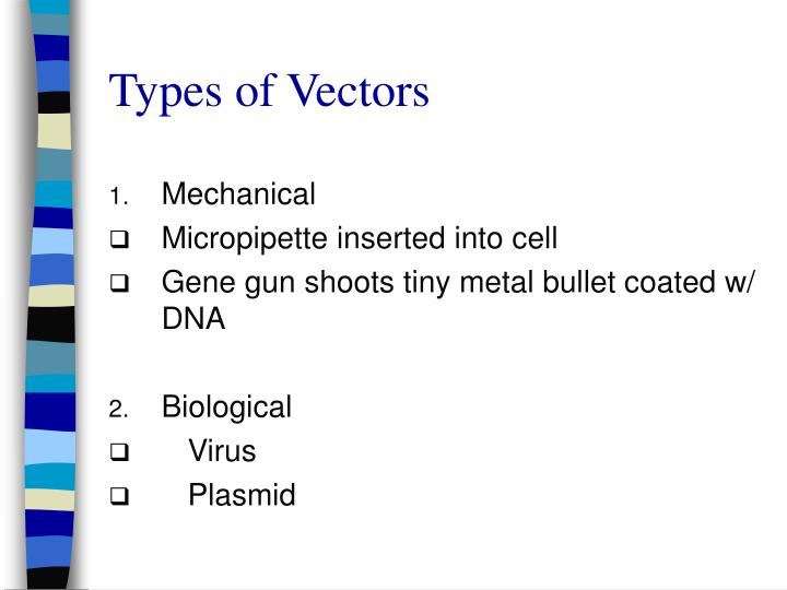 Types of Vectors