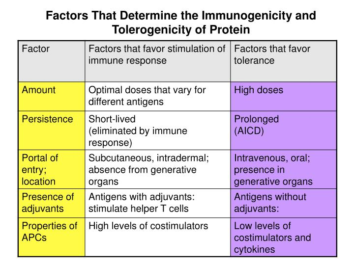 Factors That Determine the Immunogenicity and Tolerogenicity of Protein