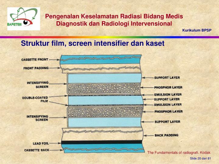 Struktur film, screen intensifier dan kaset