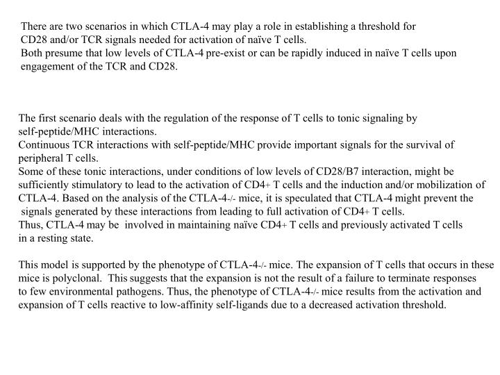 There are two scenarios in which CTLA-4 may play a role in establishing