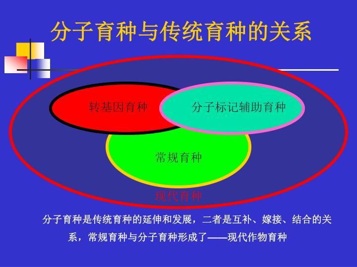 分子育种与传统育种的关系