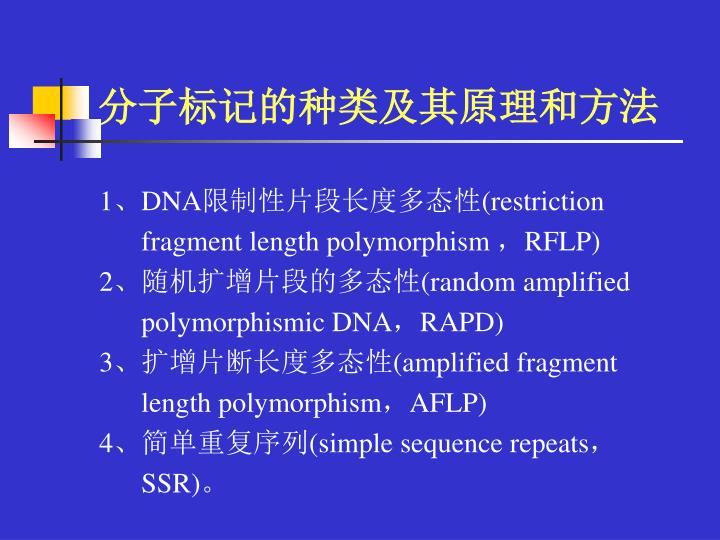 分子标记的种类及其原理和方法