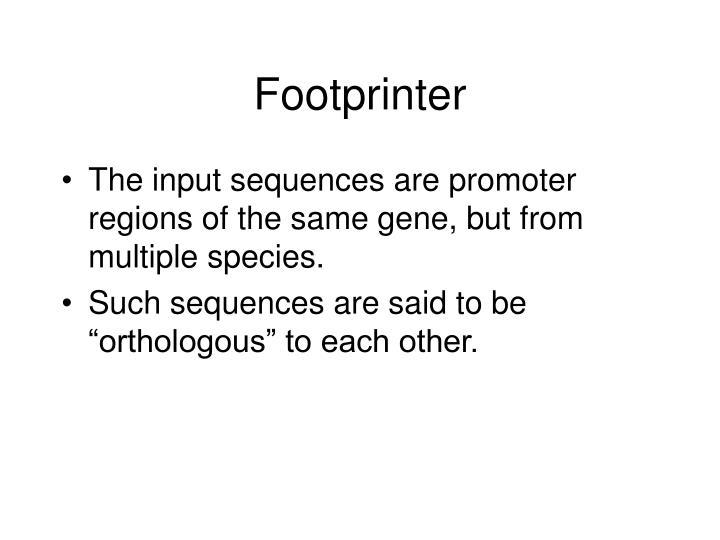 Footprinter