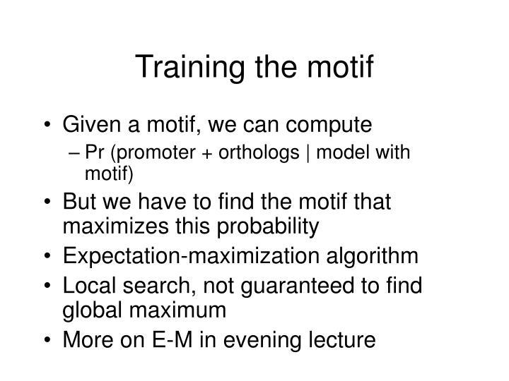 Training the motif