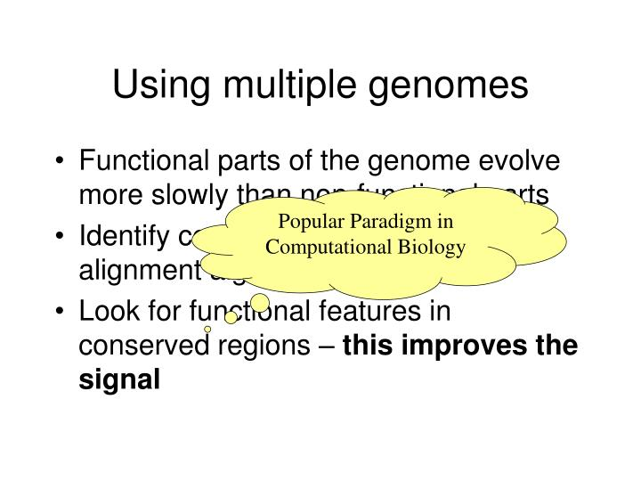 Using multiple genomes