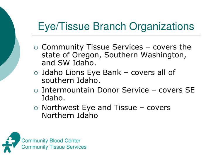 Eye/Tissue Branch Organizations