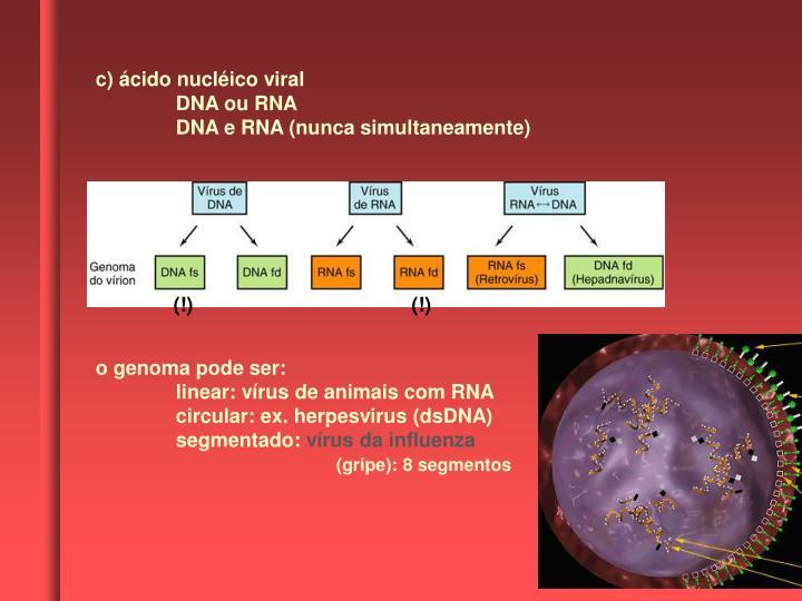 c) ácido nucléico viral