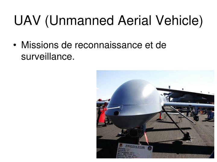 UAV (Unmanned Aerial Vehicle)