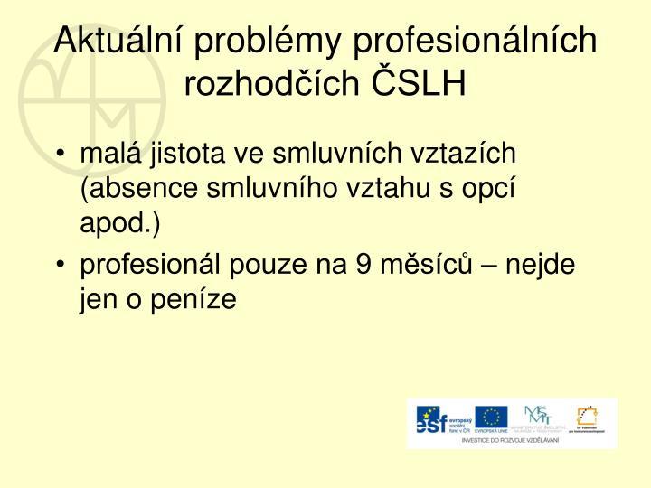 Aktuální problémy profesionálních rozhodčích ČSLH