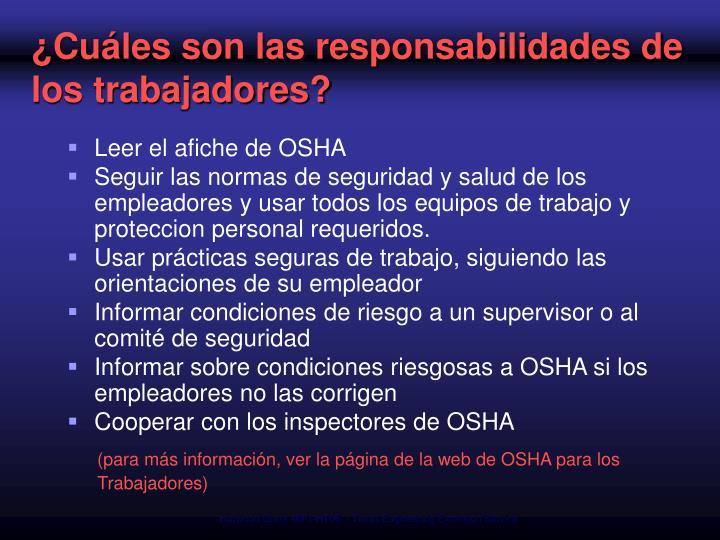 ¿Cuáles son las responsabilidades de los trabajadores?