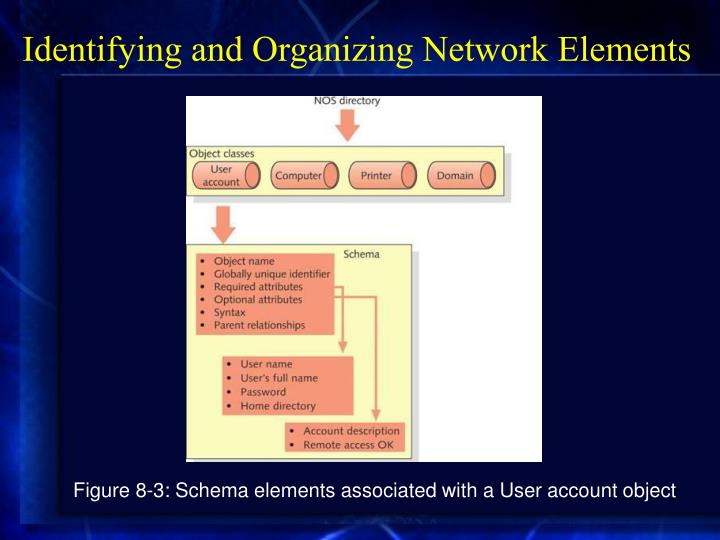 Identifying and Organizing Network Elements