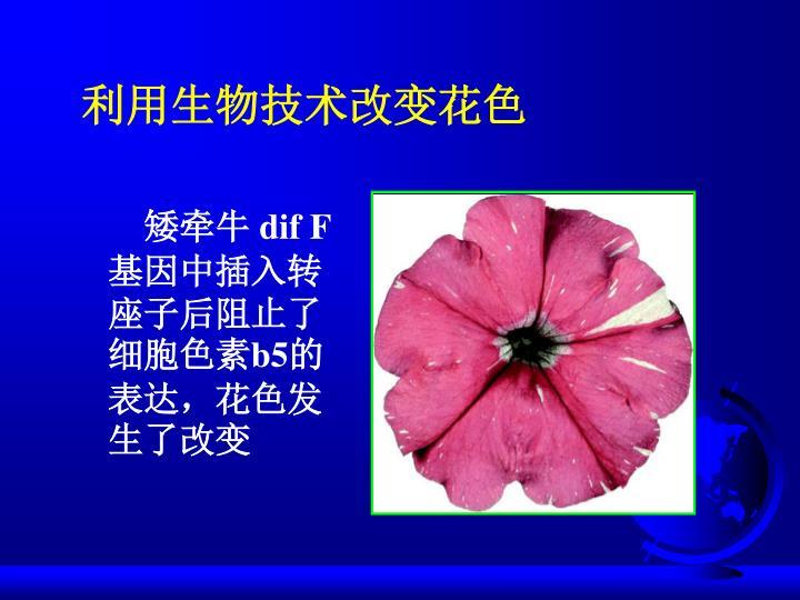 利用生物技术改变花色