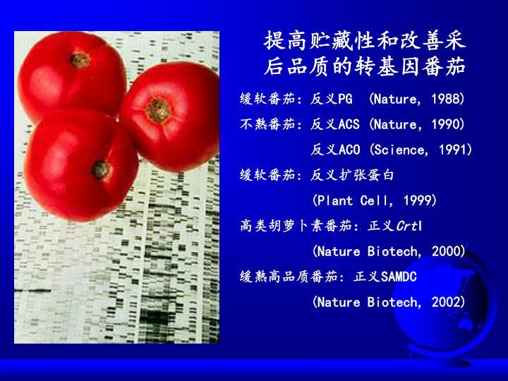 提高贮藏性和改善采后品质的转基因番茄