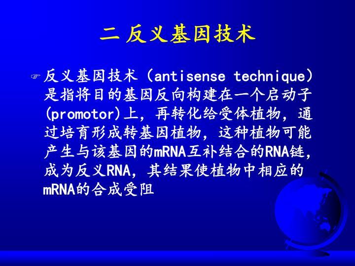 二 反义基因技术