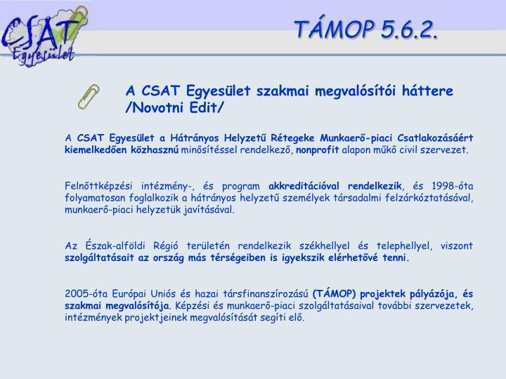 A CSAT Egyesület szakmai megvalósítói háttere /Novotni Edit/