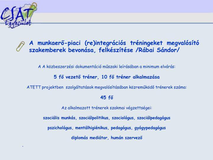 A munkaerő-piaci (re)integrációs tréningeket megvalósító szakemberek bevonása, felkészítése /Rábai Sándor/