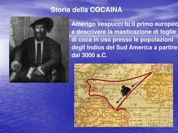 Amerigo Vespucci fu il primo europeo a descrivere la masticazione di foglie di coca in uso presso le popolazioni degli Indios del Sud America a partire dal 3000 a.C.