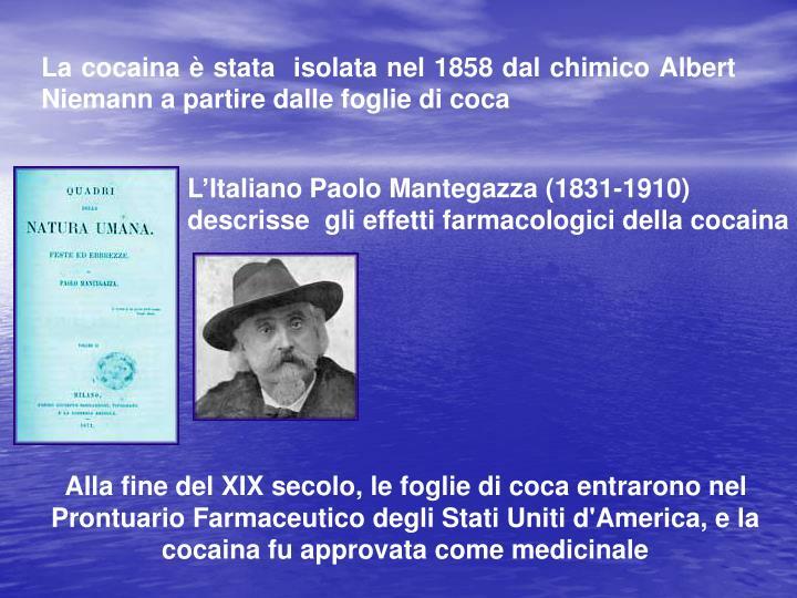 L'Italiano Paolo Mantegazza (1831-1910) descrisse  gli effetti farmacologici della cocaina