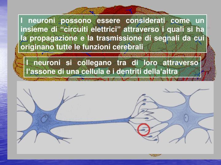 """I neuroni possono essere considerati come un insieme di """"circuiti elettrici"""" attraverso i quali si ha la propagazione e la trasmissione di segnali da cui originano tutte le funzioni cerebrali"""