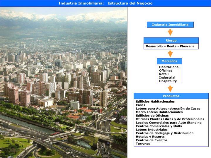 Industria Inmobiliaria:   Estructura del Negocio