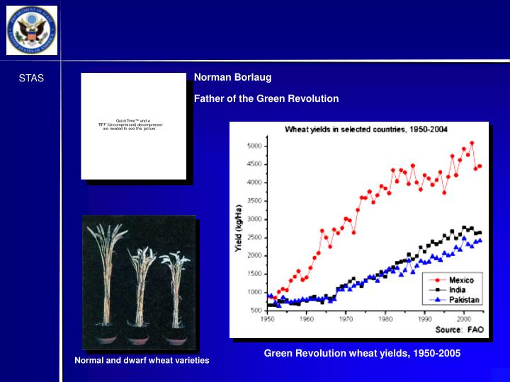 Green Revolution wheat yields, 1950-2005