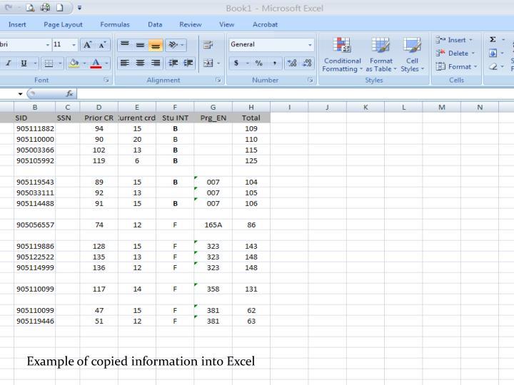 Example of copied information into Excel
