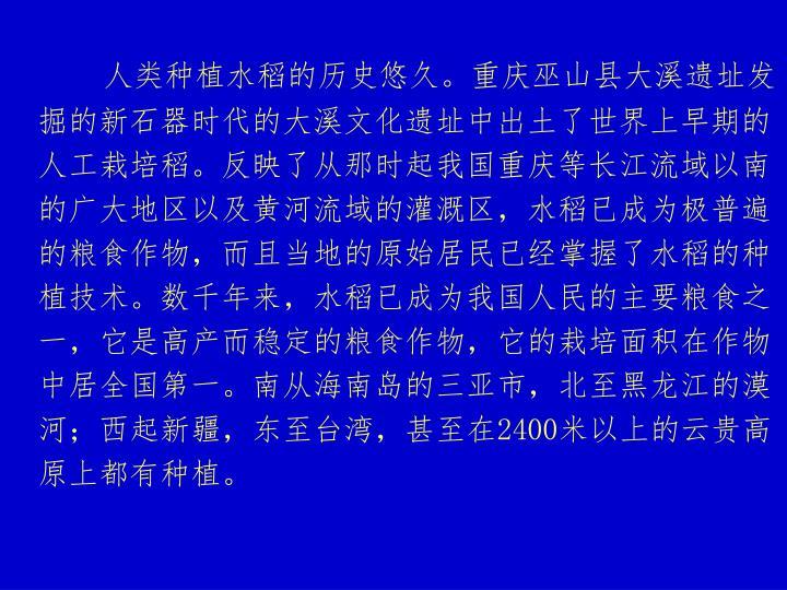 人类种植水稻的历史悠久。重庆巫山县大溪遗址发掘的新石器时代的大溪文化遗址中出土了世界上早期的人工栽培稻。反映了从那时起我国重庆等长江流域以南的广大地区以及黄河流域的灌溉区,水稻已成为极普遍的粮食作物,而且当地的原始居民已经掌握了水稻的种植技术。数千年来,水稻已成为我国人民的主要粮食之一,它是高产而稳定的粮食作物,它的栽培面积在作物中居全国第一。南从海南岛的三亚市,北至黑龙江的漠河;西起新疆,东至台湾,甚至在