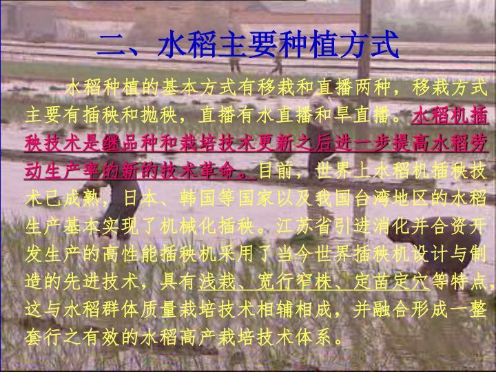 二、水稻主要种植方式