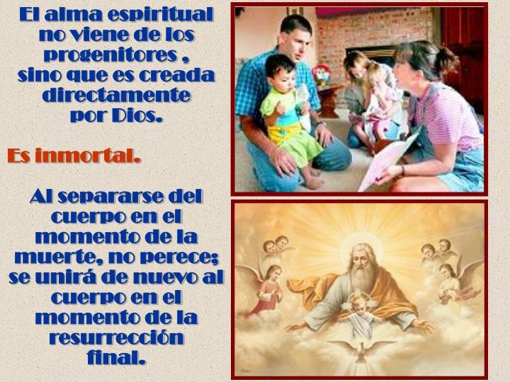 El alma espiritual no viene de los progenitores ,