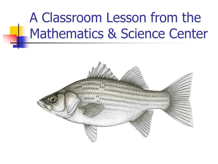 A Classroom Lesson from the