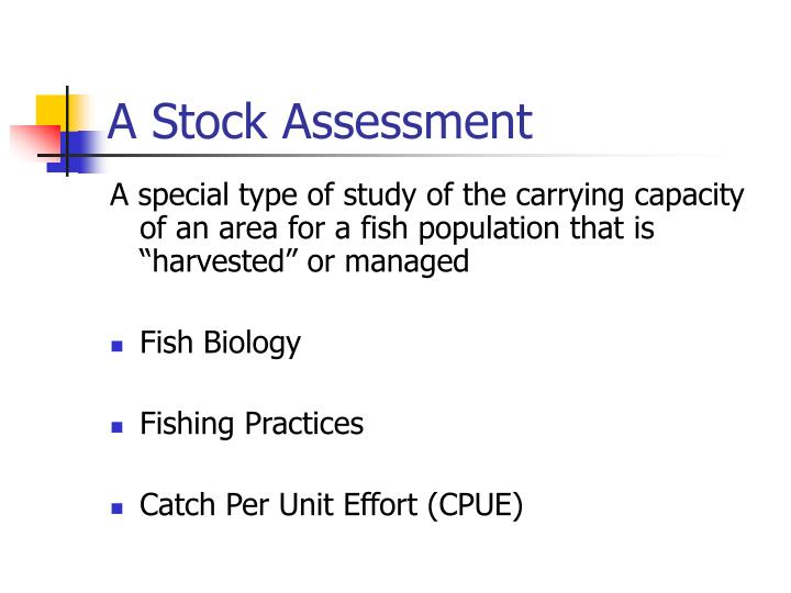 A Stock Assessment