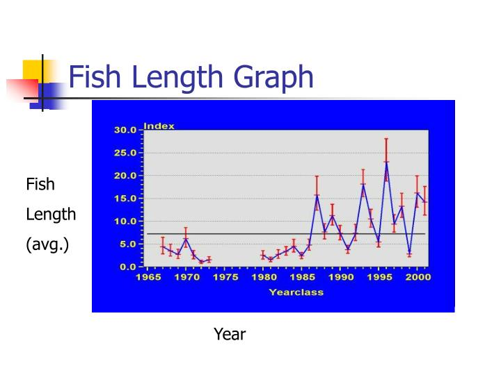 Fish Length Graph