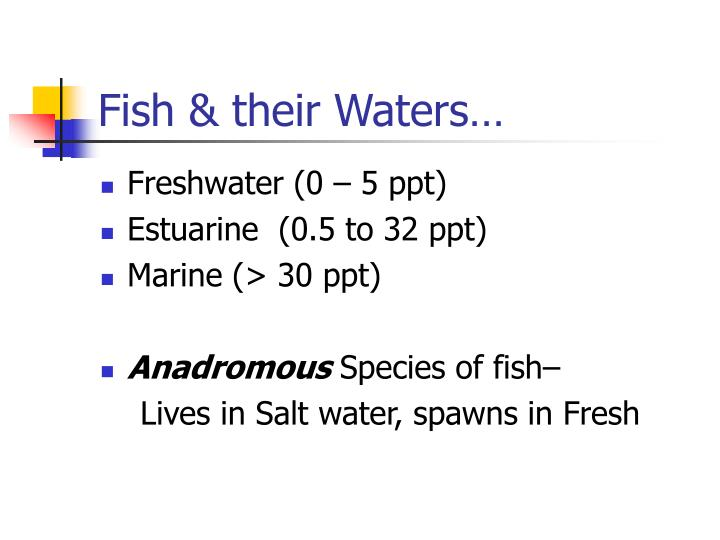 Fish & their Waters…