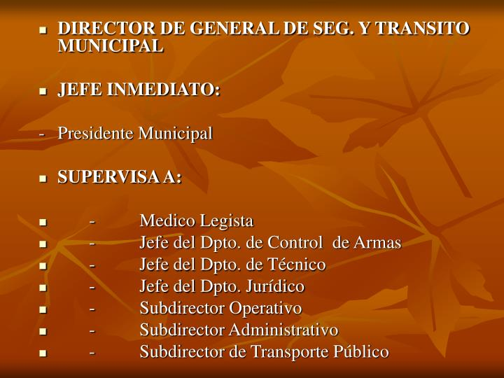 DIRECTOR DE GENERAL DE SEG. Y TRANSITO MUNICIPAL