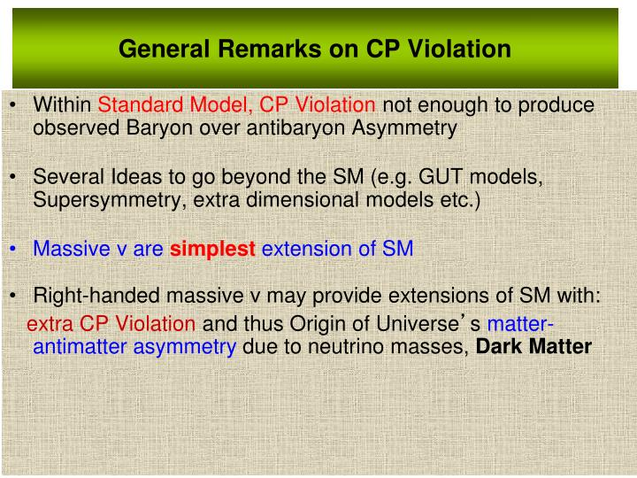 General Remarks on CP Violation