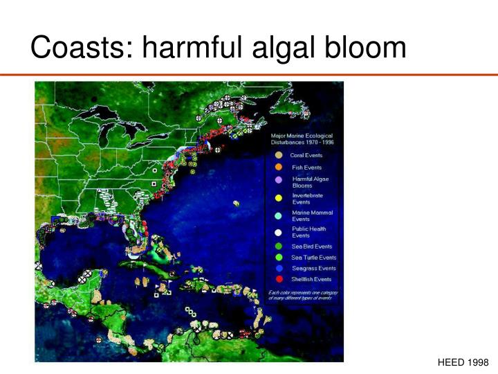 Coasts: harmful algal bloom