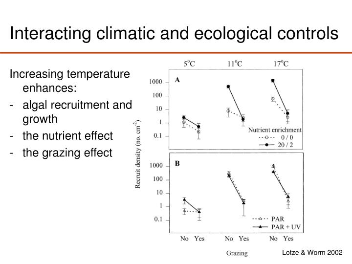 Interacting climatic and ecological controls