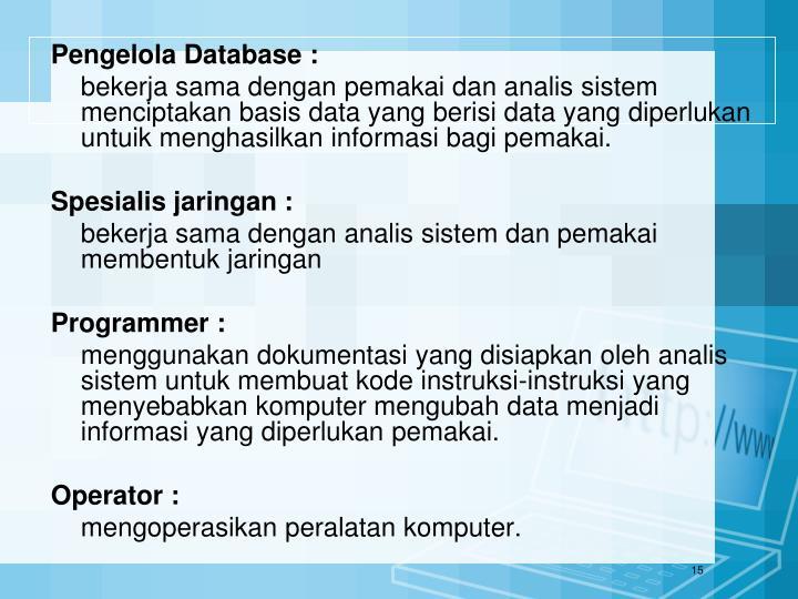 Pengelola Database :