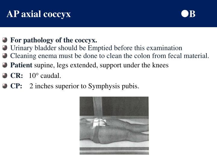 AP axial coccyx