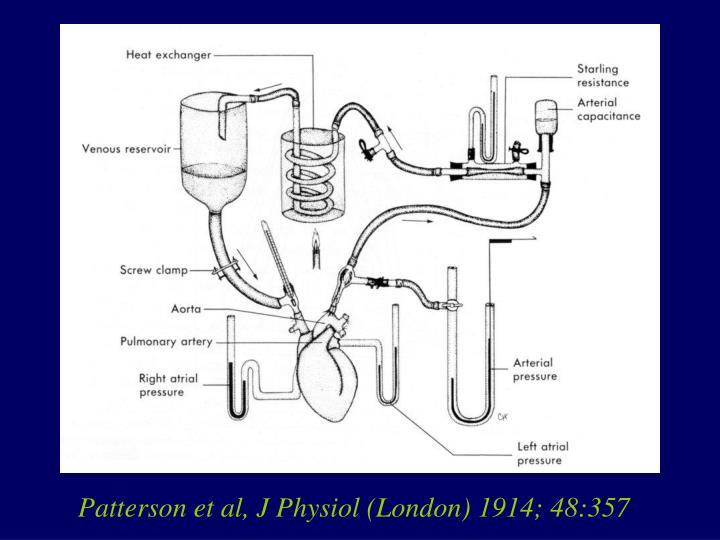 Patterson et al, J Physiol (London) 1914; 48:357