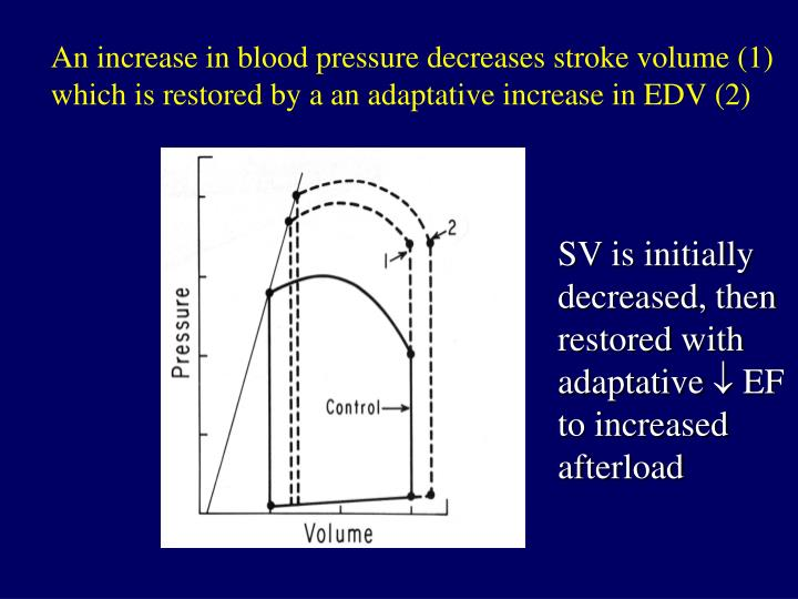 An increase in blood pressure decreases stroke volume (1)