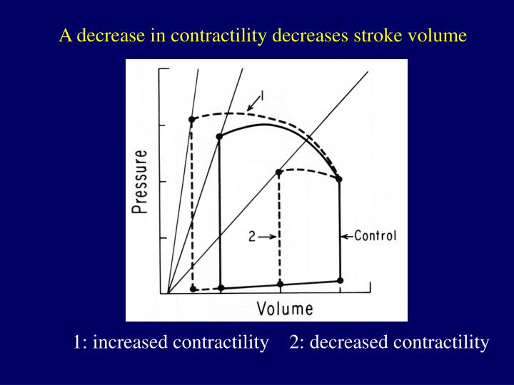 A decrease in contractility decreases stroke volume