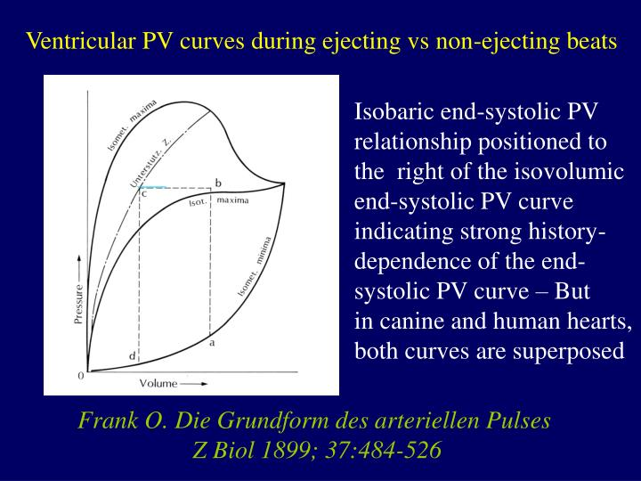 Ventricular PV curves during ejecting vs non-ejecting beats