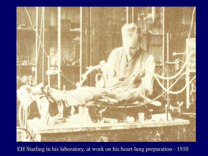 EH Starling in his laboratory, at work on his heart-lung preparation - 1910