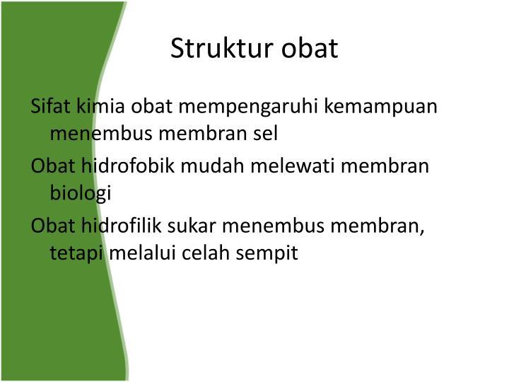 Struktur obat