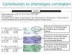 contribution to phenotypic correlation2