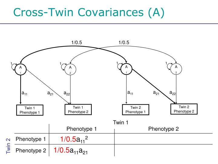 Cross-Twin Covariances (A)