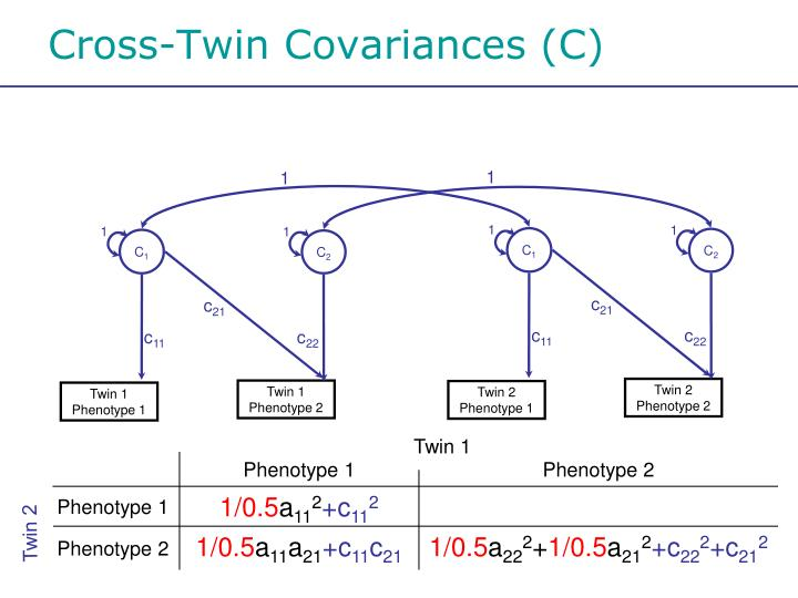 Cross-Twin Covariances (C)